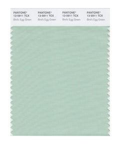 PANTONE SMART swatch 13-5911 TCX Bird's Egg Green