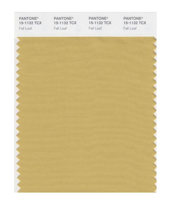 PANTONE SMART swatch 15-1132 TCX Fall Leaf