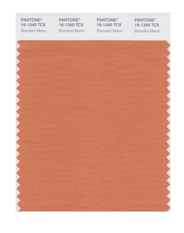 PANTONE SMART swatch 16-1340 TCX Brandied Melon