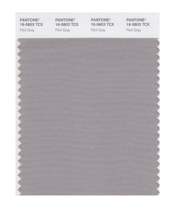 PANTONE SMART swatch 16-5803 TCX Flint Gray
