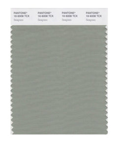 PANTONE SMART swatch 16-6008 TCX Seagrass