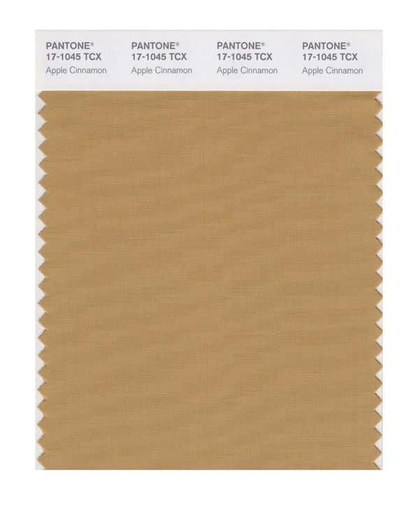 PANTONE SMART swatch 17-1045 TCX Apple Cinnamon