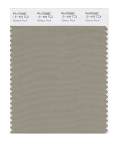 PANTONE SMART swatch 17-1107 TCX Seneca Rock