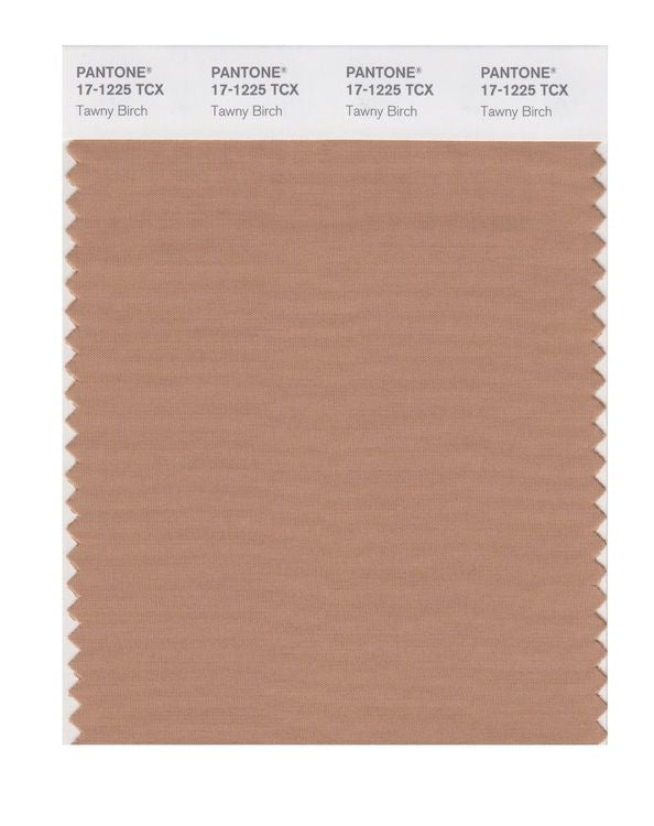 PANTONE SMART swatch 17-1225 TCX Tawny Birch