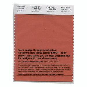 PANTONE SMART swatch 17-1345 TCX Spice Route