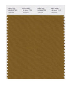 PANTONE SMART swatch 18-0840 TCX Tapenade
