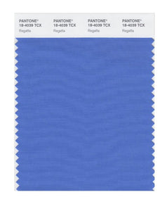 PANTONE SMART swatch 18-4039 TCX Regatta
