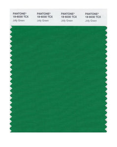 PANTONE SMART swatch 18-6030 TCX Jolly Green