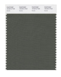 PANTONE SMART swatch 19-0312 TCX Beetle
