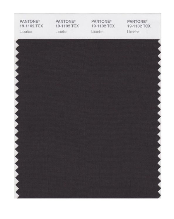 PANTONE SMART swatch 19-1102 TCX Licorice