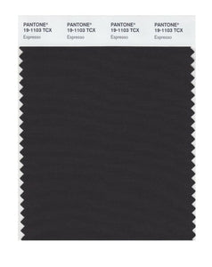 PANTONE SMART swatch 19-1103 TCX Espresso