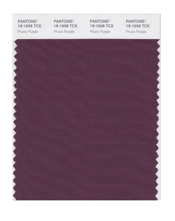 PANTONE SMART swatch 19-1608 TCX Prune Purple