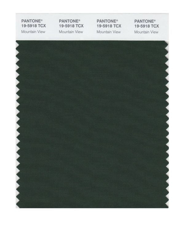 PANTONE SMART swatch 19-5918 TCX Mountain View