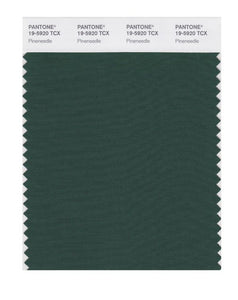 PANTONE SMART swatch 19-5920 TCX Pineneedle