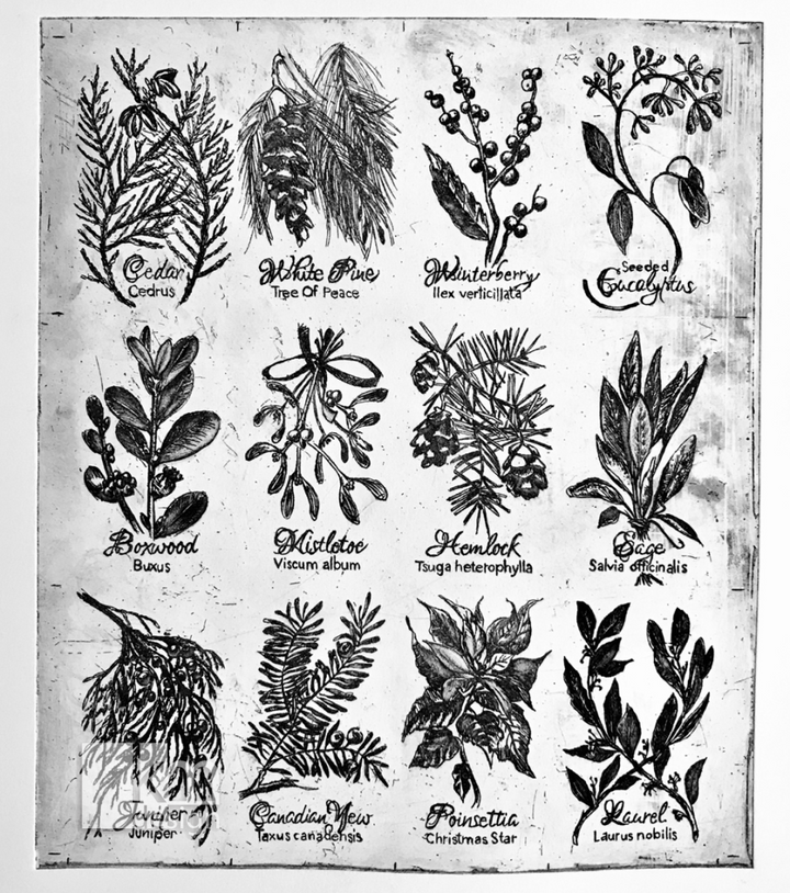 Winter Botanicals Etching, [product type],handmade - Kristine MacGregor - KM Design - Art - Printmaking