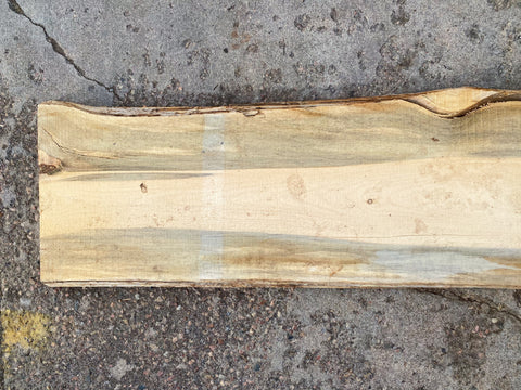 "94"" x 16"" x 2"" Beetle Kill Pine Live Edge Slab"