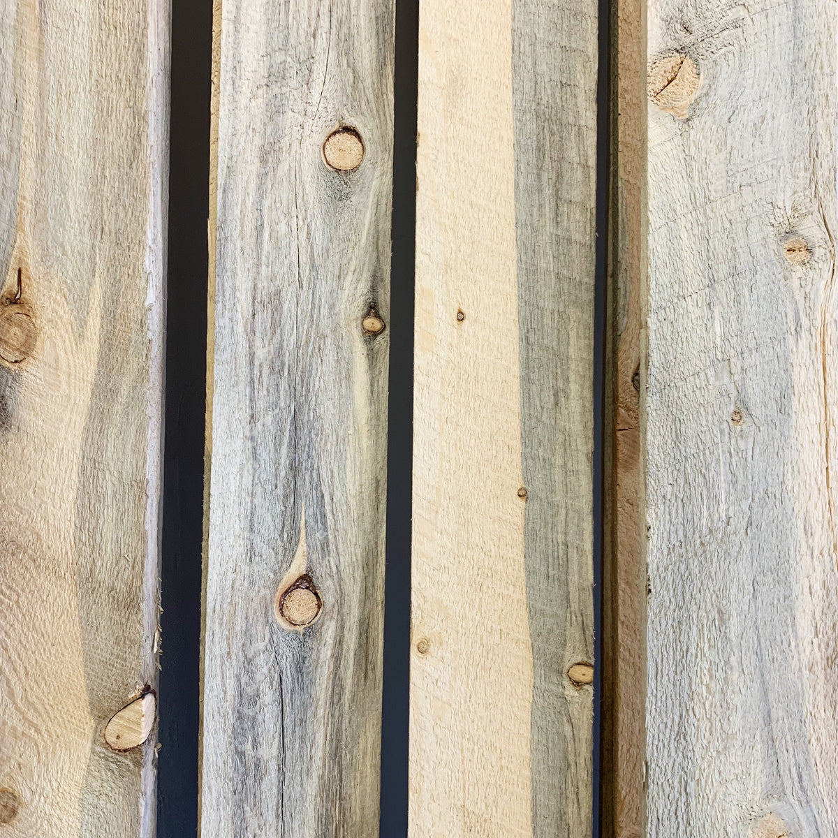 Beetle Kill Pine Boards Salvagedesigncenter