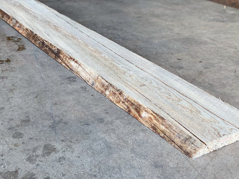 "99"" x 8"" x 1"" Beetle Kill Pine Live Edge Slab"