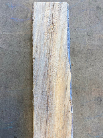 "98"" x 8"" x 3/4"" Beetle Kill Pine Live Edge Slab"