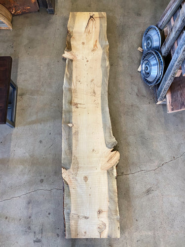 "96"" x 20"" x 2"" Beetle Kill Pine Live Edge Slab"