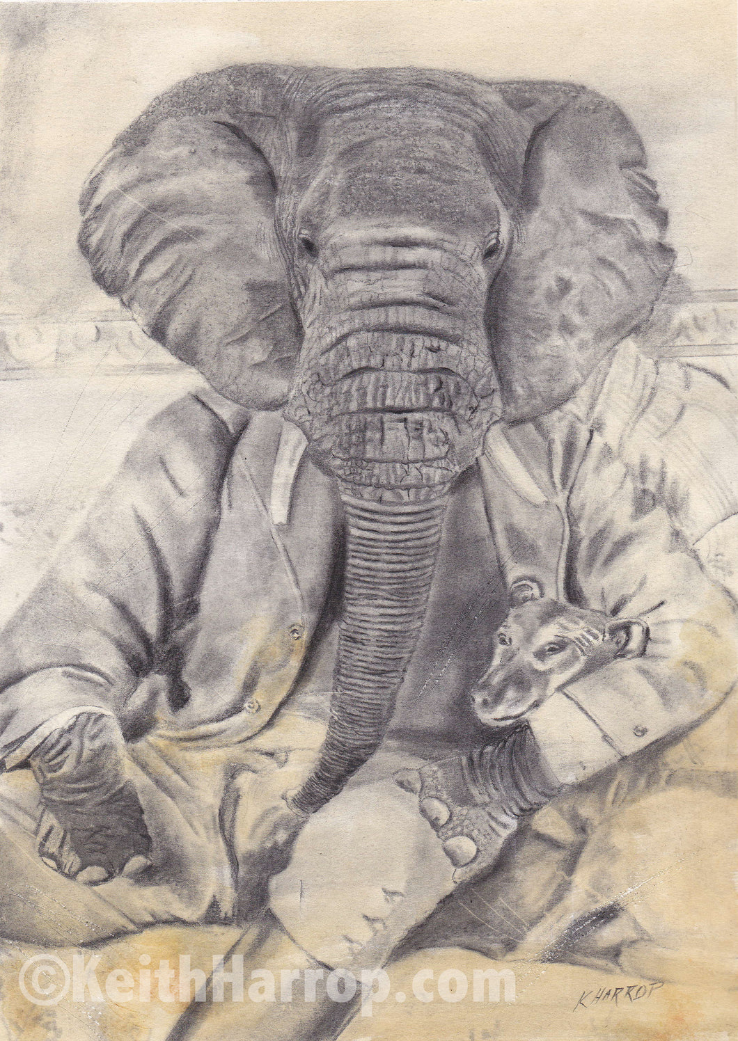 Animorphia #4 (Elephant)  - Pencil Illustration