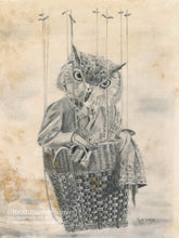 Load image into Gallery viewer, Animorphia #10 (Owl)- Pencil Illustration