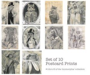Postcards: Assorted 10 pack (All signed) - Pencil Illustrations