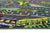 Non Slip Green Kids Grand Prix Race Track Road Rug