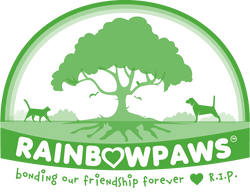 Rainbowpaws Rainbow Crystal