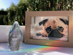 Rainbow Crystal Pet Keepsake Urn - Rainbowpaws Rainbow Crystal