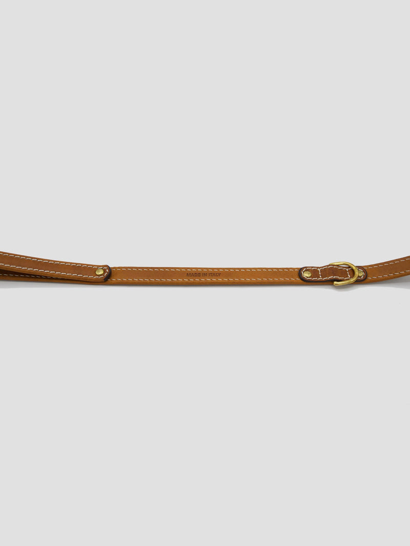 Dog Kit Saddle [Puppy Collar, Strong Dog Leash]