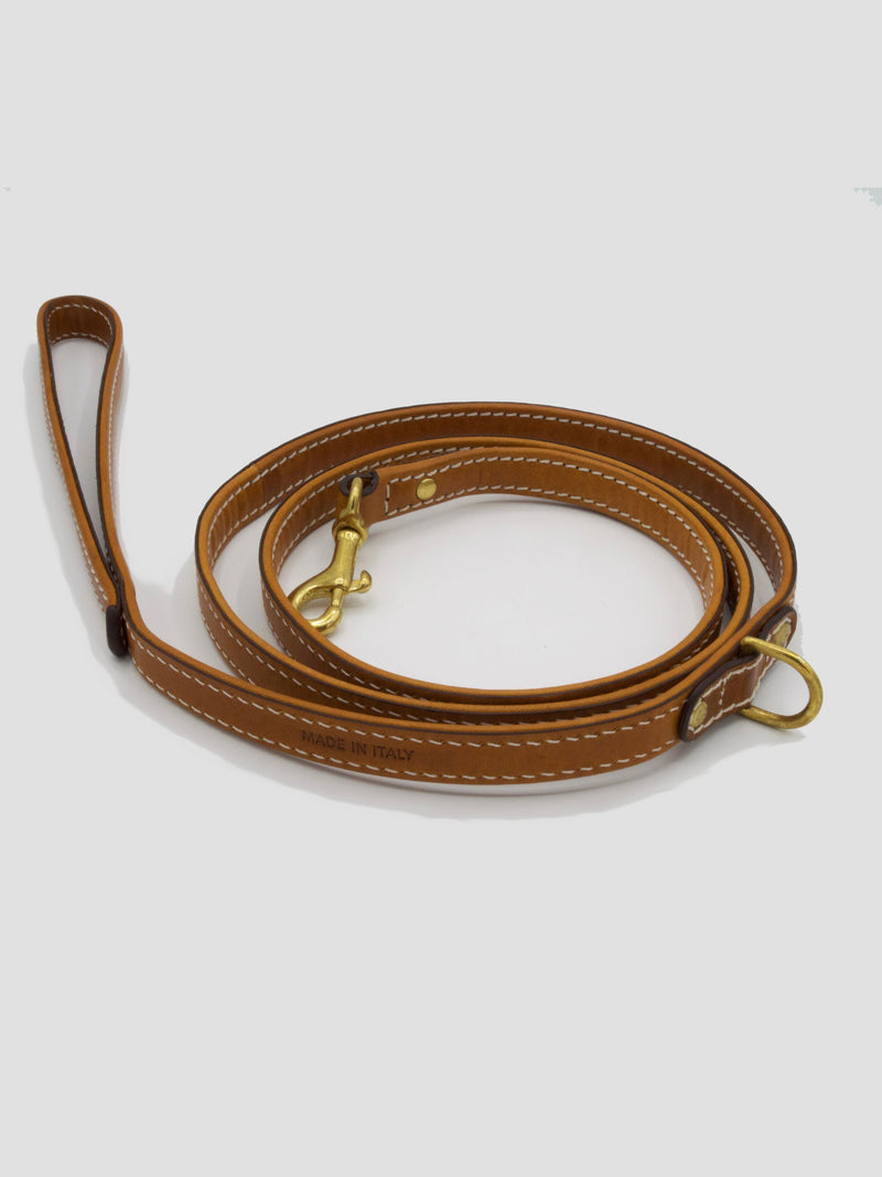 Dog Kit Saddle [Luxury Puppy Collar, Leather Puppy Leash]