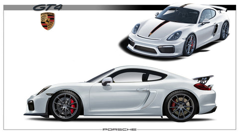 Cayman GT4  (2 view)