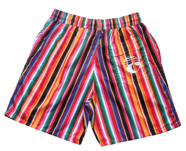 COLORS LINES SWIM SHORTS