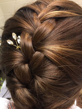 Load image into Gallery viewer, HEIDI - Crystal Hairpins