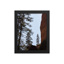 Load image into Gallery viewer, Pine