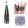 14 Colors Aurora Irregular Flakies Powder Chameleon Nail Glitter Sequins For Manicure