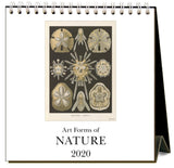 Art Forms of Nature 2020 Calendar