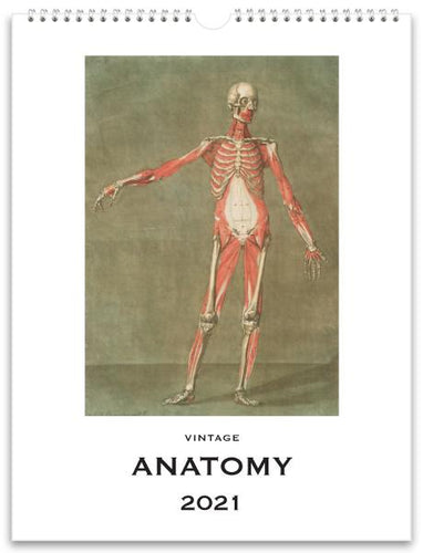 Anatomy 2021 Wall Calendar