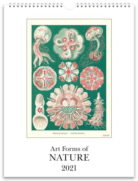 Art Forms of Nature 2021 Wall Calendar