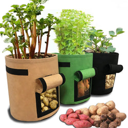 GreenLife™ Non-Woven Fabric Potato Planting Pot