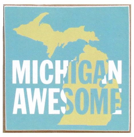 Michigan Awesome Box Frame