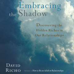 Embracing the Shadow: Discovering the Hidden Riches in Our Relationships by David Richo