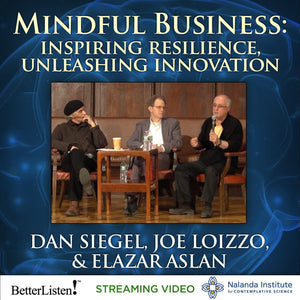 Mindful Business: Inspiring Resilience, Unleashing Innovation Audio Program Nalanda - BetterListen!