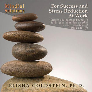 Mindful Solutions for Success and Stress Reduction at Work with Elisha Goldstein Audio Program Elisha Goldstein - BetterListen!