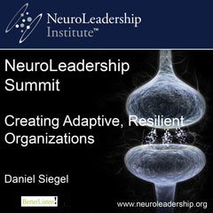 Creating Adaptive, Resilient Organizations with Daniel Siegel