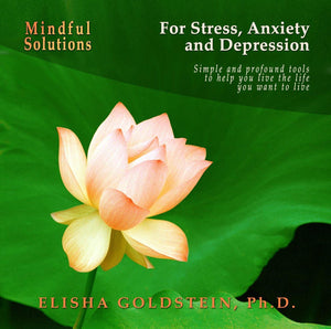 Mindful Solutions for Stress, Anxiety, and Depression with Elisha Goldstein Audio Program Elisha Goldstein - BetterListen!