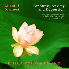 Mindful Solutions for Stress, Anxiety, and Depression with Elisha Goldstein
