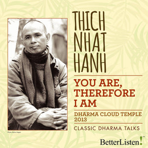 You Are, Therefore I Am by Thich Nhat Hanh Audio Program Parallax Press - BetterListen!