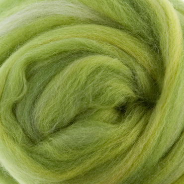 Extra Fine Merino Candy 19 Microns One Ounce Parrot